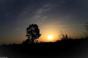 Sunset at DPS Tapi